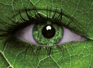 Geoambiente Srl: Visione Innovativa